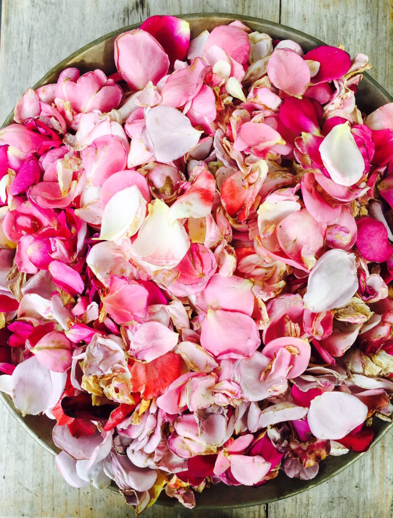 rose-petals-soul-wellness